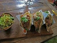 Mexican Sugar - Spicy Habanero Chicken Tacos