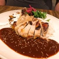 OMGs DFW Food -Meso Maya Pollo Con Mole